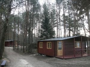 Stovyklavietė miško monai (13)