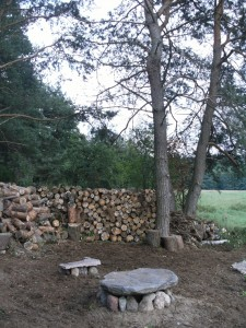 Stovyklavietė miško monai (5)